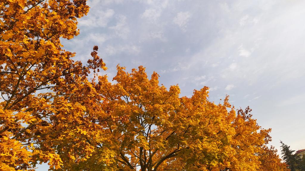 Podzimní prázdniny s DDM Třebíč