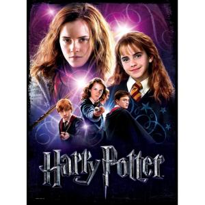 Letem světem s Harry Potterem II.